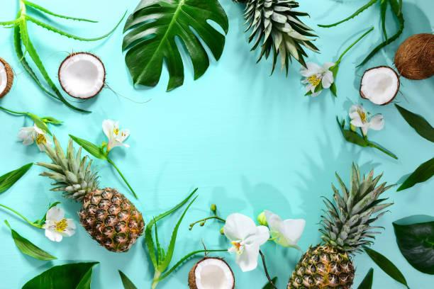 yaz tropikal tema arka plan, bir metin için bir yer ile düz yatıyordu kompozisyon - hindistan cevizi tropik meyve stok fotoğraflar ve resimler
