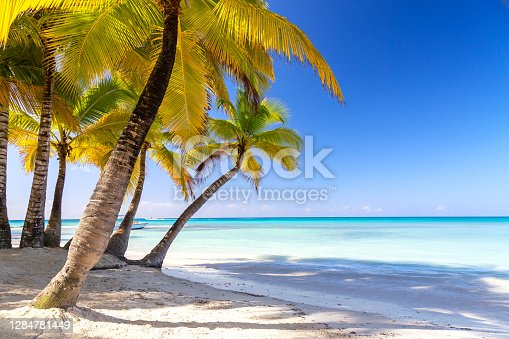 Summer vacation and tropical beach concept. Sandy beach with palms and turquoise sea. Vacation island
