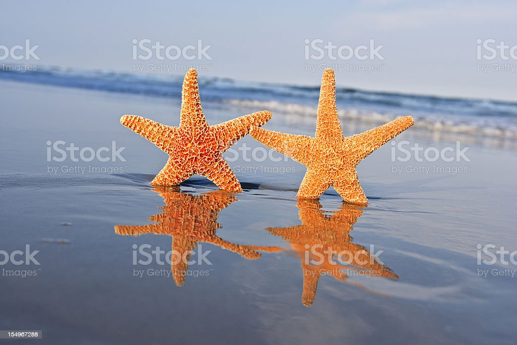 Summer vacation at the beach royalty-free stock photo