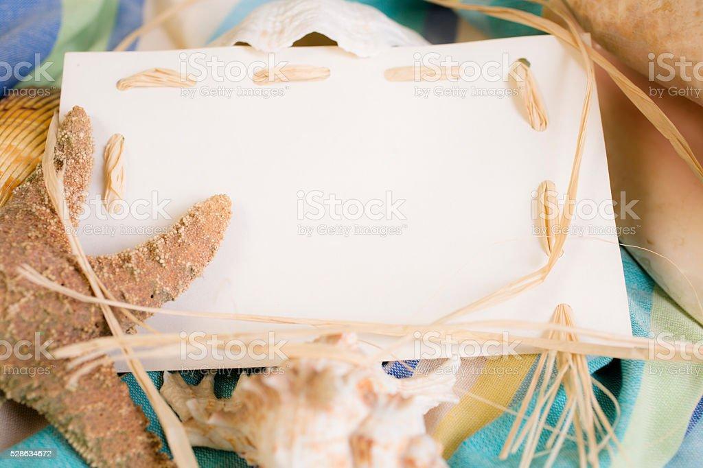 Summer Vacation Blank White Notecard With Seashells Beach Blanket
