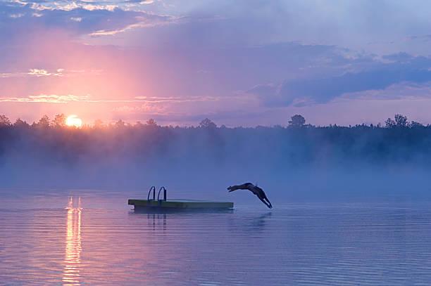 여름 휴가 아침입니다 수영하다,#1 - 부잔교 뉴스 사진 이미지