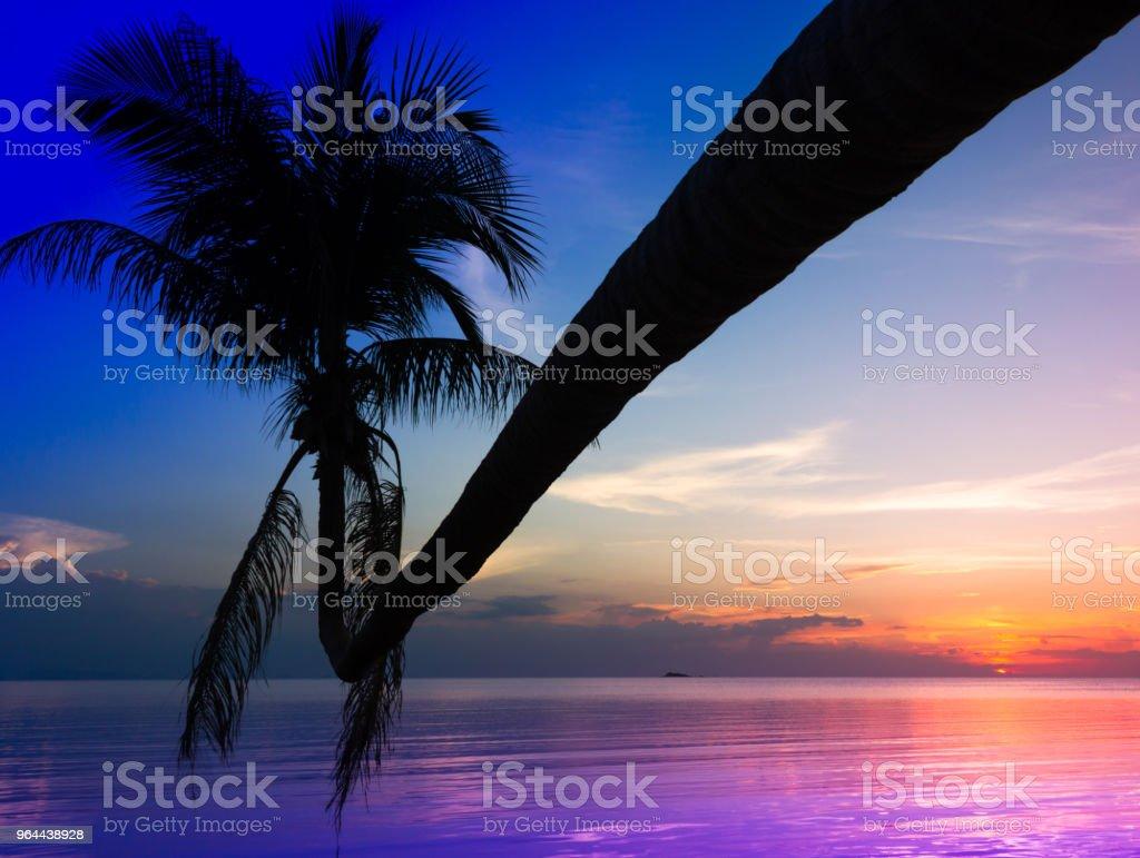 Férias de verão, o conceito de destino paraíso - Foto de stock de Azul royalty-free