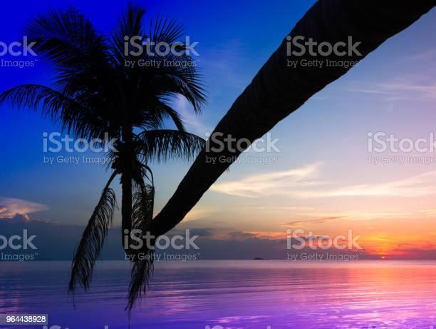 Foto de Férias De Verão O Conceito De Destino Paraíso e mais fotos de stock de Azul