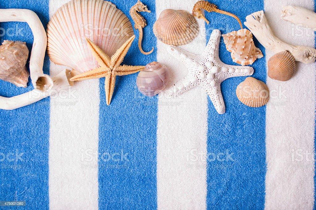 Summer vacation scene. Seashells on blue beach towel. stock photo
