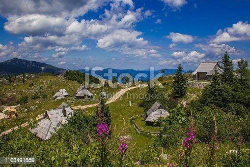 Summer view Big Pasture Plateau (Velika Planina) with flowers is a karstified mountain plateau in the Kamnik–Savinja Alps northeast of Kamnik, Slovenia, Europe