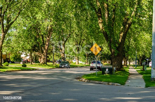Summer view of a corner of a suburban tree lined shady street with a people crossing sign