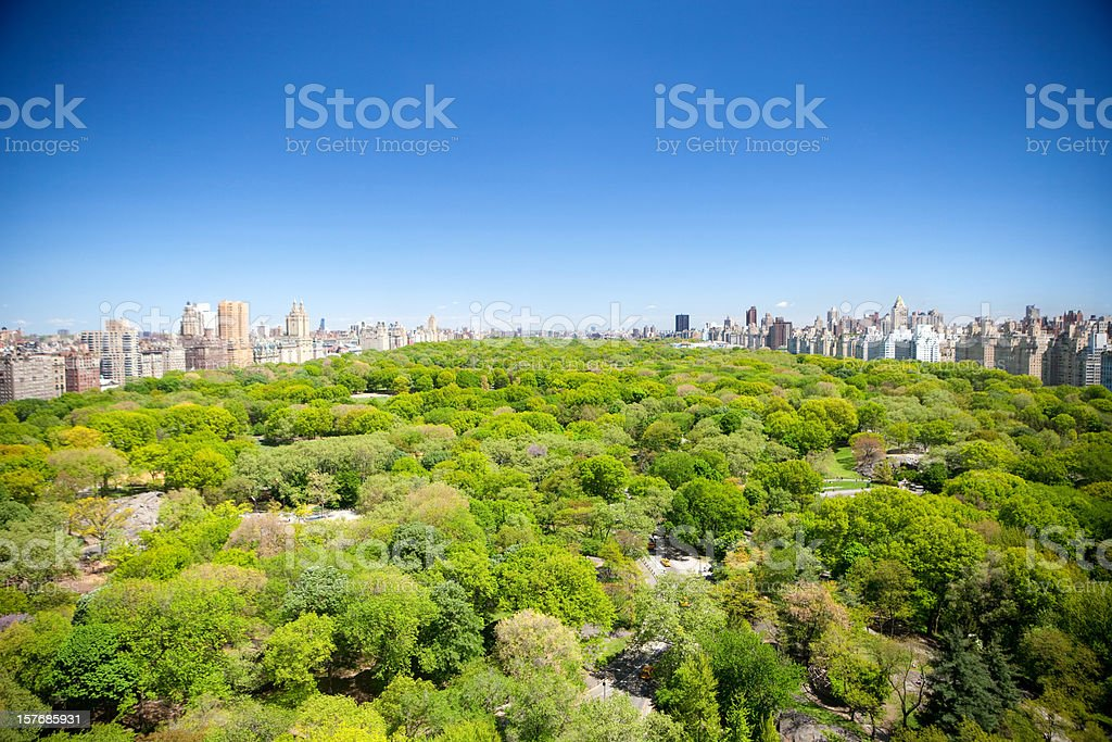 Summer View of Central park stock photo