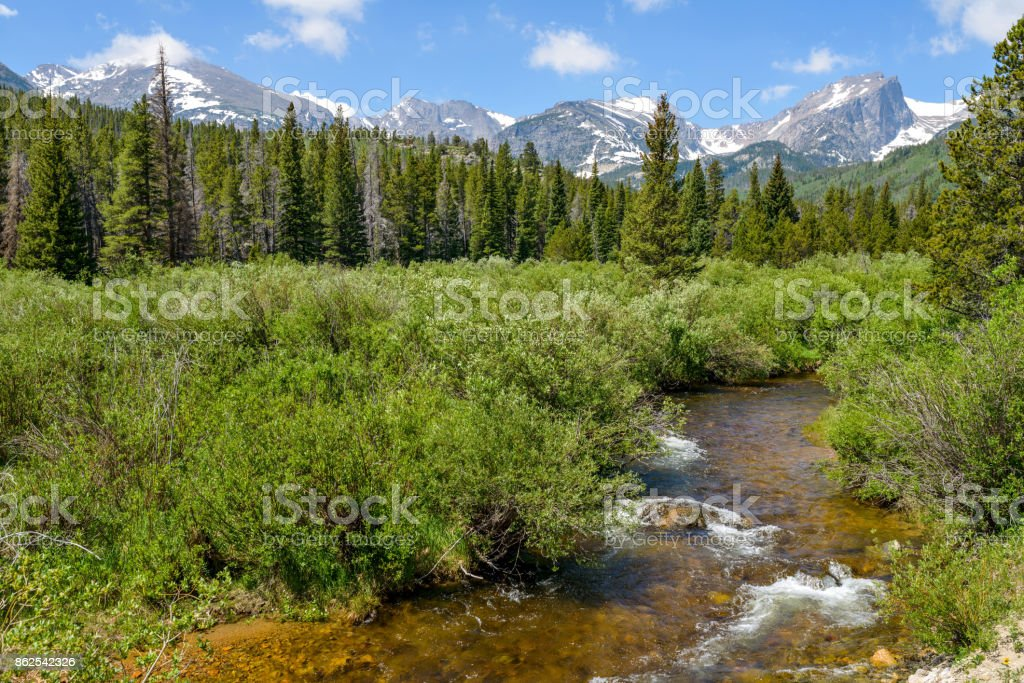 A summer view of Glacier Creek running through dense evergreen forest at base of snow-capped high mountain range in Rocky Mountain National Park, Estes Park, Colorado, USA. stock photo