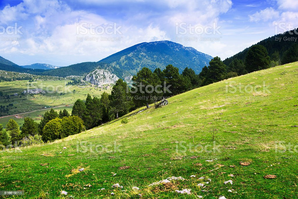 Summer view of highland meadow stock photo