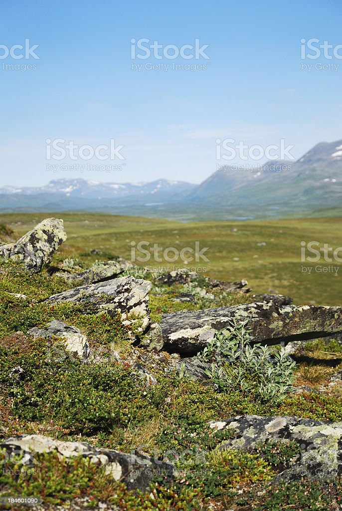Summer view of Sweden Lapland. stock photo