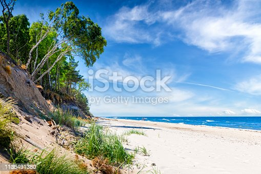 Summer view of the Baltic sea coast with birch trees, Wolinski National Park in Wolin island, Poland