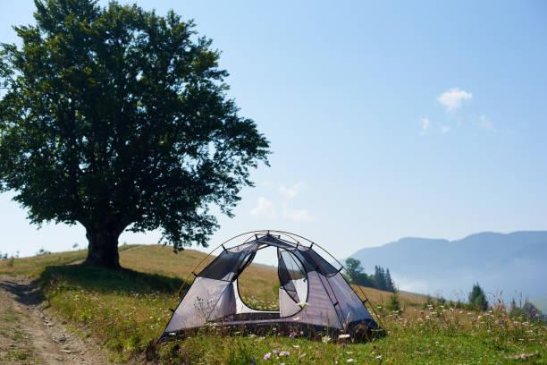 sommer blick auf touristische zelt in den bergen am morgen - zelt stehhöhe stock-fotos und bilder