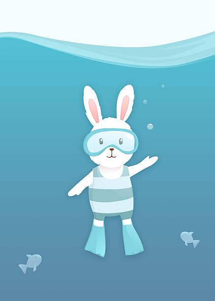 Summer white rabbit  under water stock photo