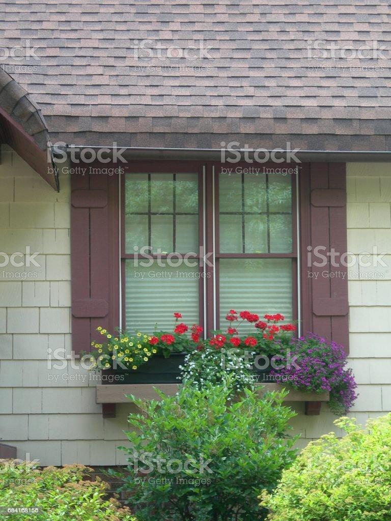 Summer Window Box foto stock royalty-free