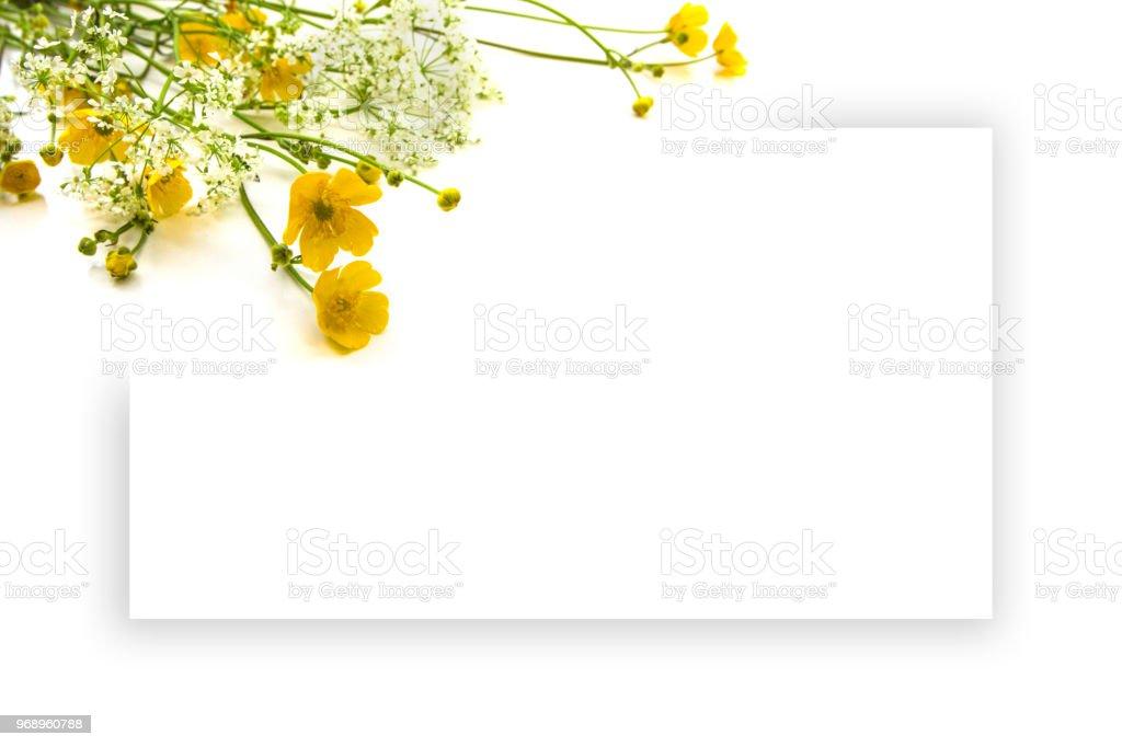 Fotografía de Flores Silvestres De Color Amarillos Y Blanco De ...