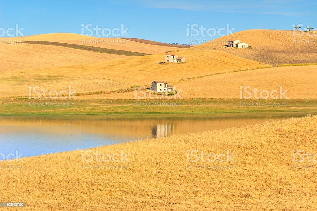 Paesaggio rurale SUMMER.Between Puglia e Basilicata: Lago Basentello.Poggiorsini (Italia - foto stock
