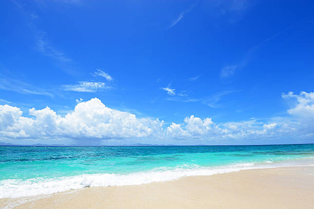 夏のビーチで  - 夏 ストックフォトと画像