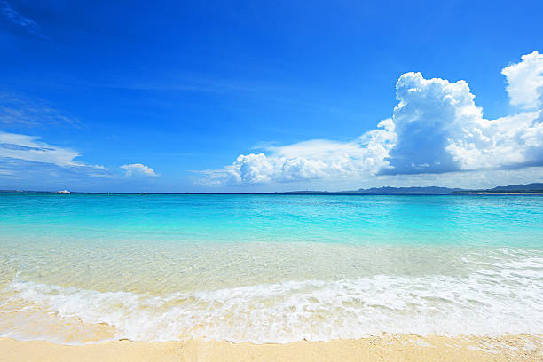 夏のビーチで  ストックフォト