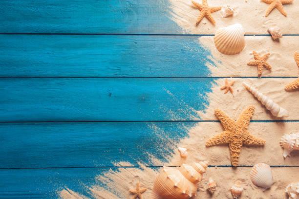 concept de summertime sur fond en bois bleu - coquillage photos et images de collection
