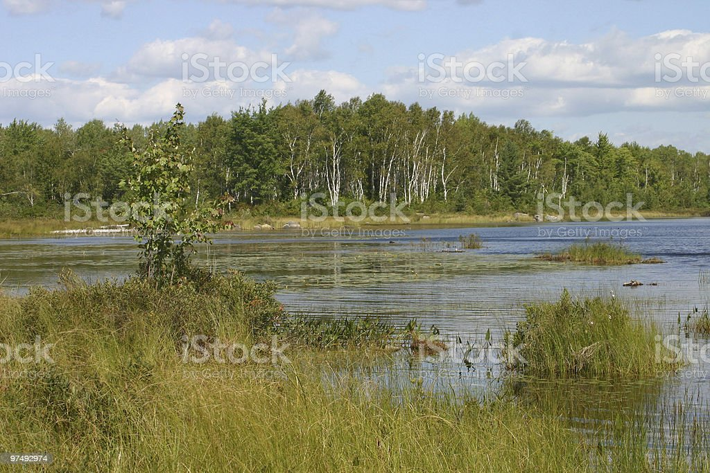 Summertime flow on a New England pond royalty-free stock photo