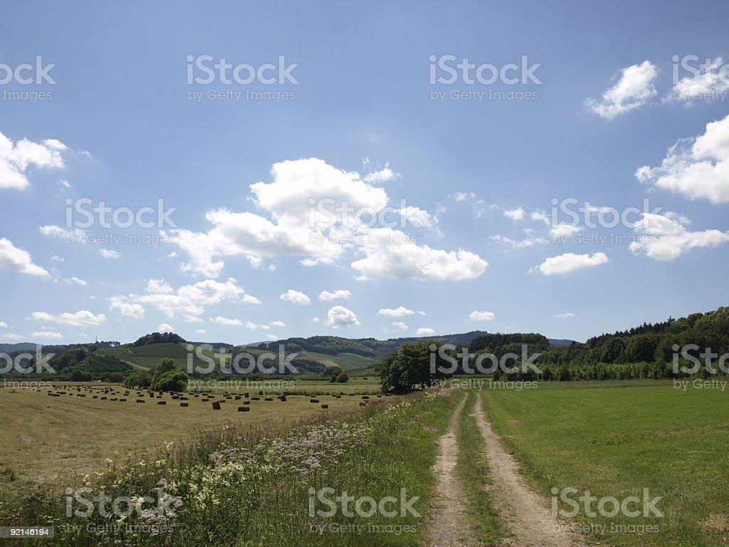 Sommer in Black Forest mit Auswahl und blauer Himmel Wolken – Foto