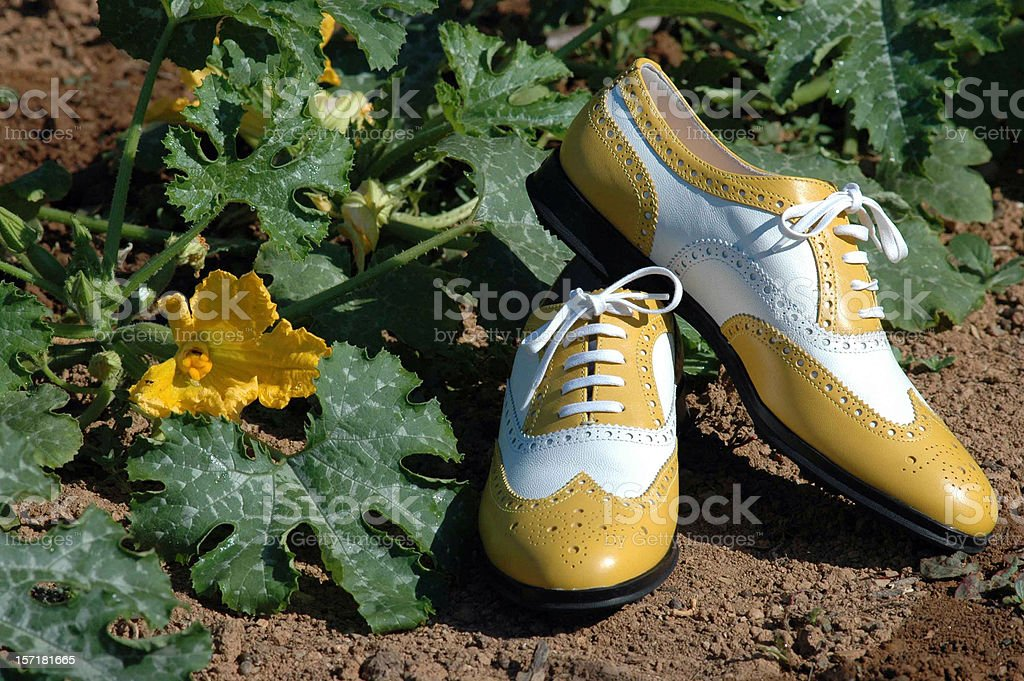 Summertime (going dancing, mr?) royalty-free stock photo