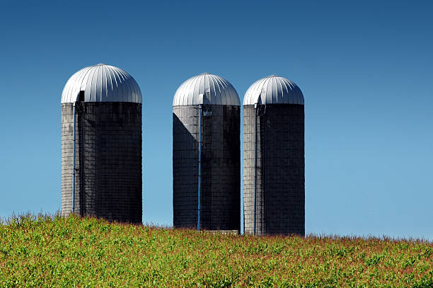 silage storage tower pictures