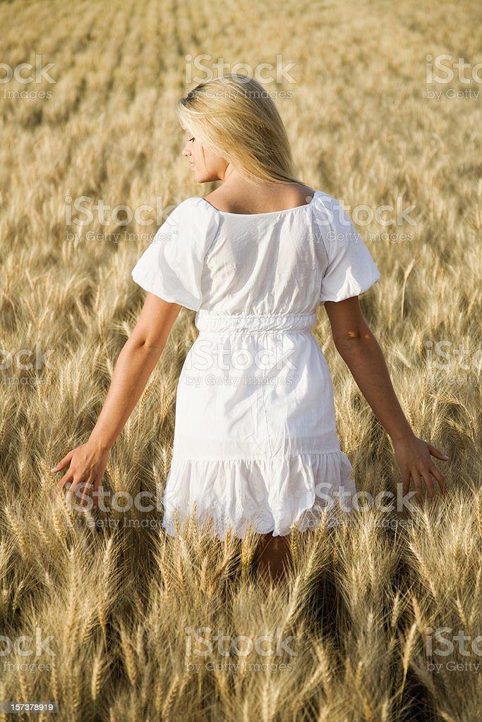 Summertime Solitude royalty-free stock photo