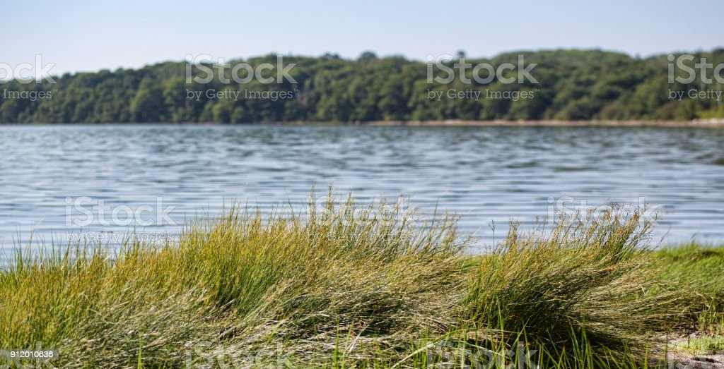 Summertime view of a Maine bay stock photo