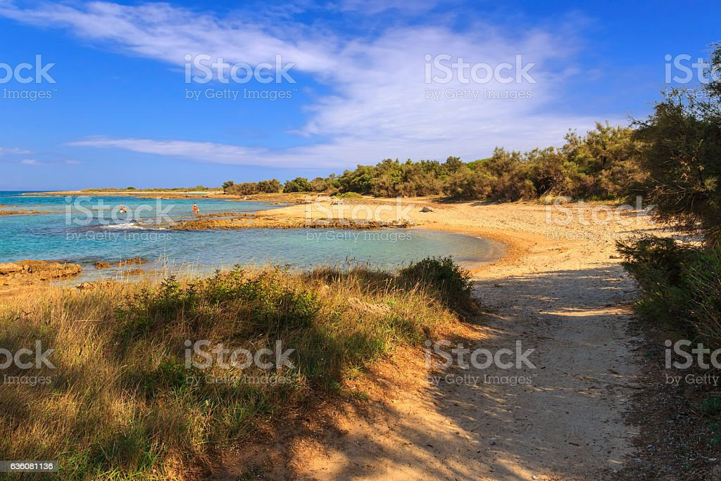 Summertime.Torre Guaceto Nature Reserve: sandy beach. BRINDISI (Apulia)-ITALY- stock photo