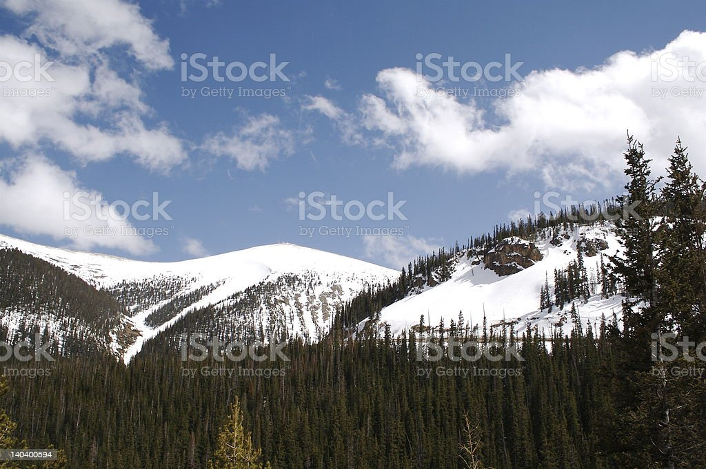 Summit near Steamboat Springs, CO royalty-free stock photo