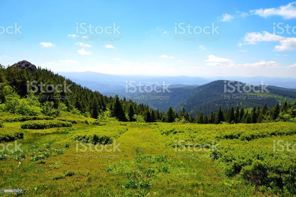 Summit of mountain Grosser Arber, Germany. stock photo