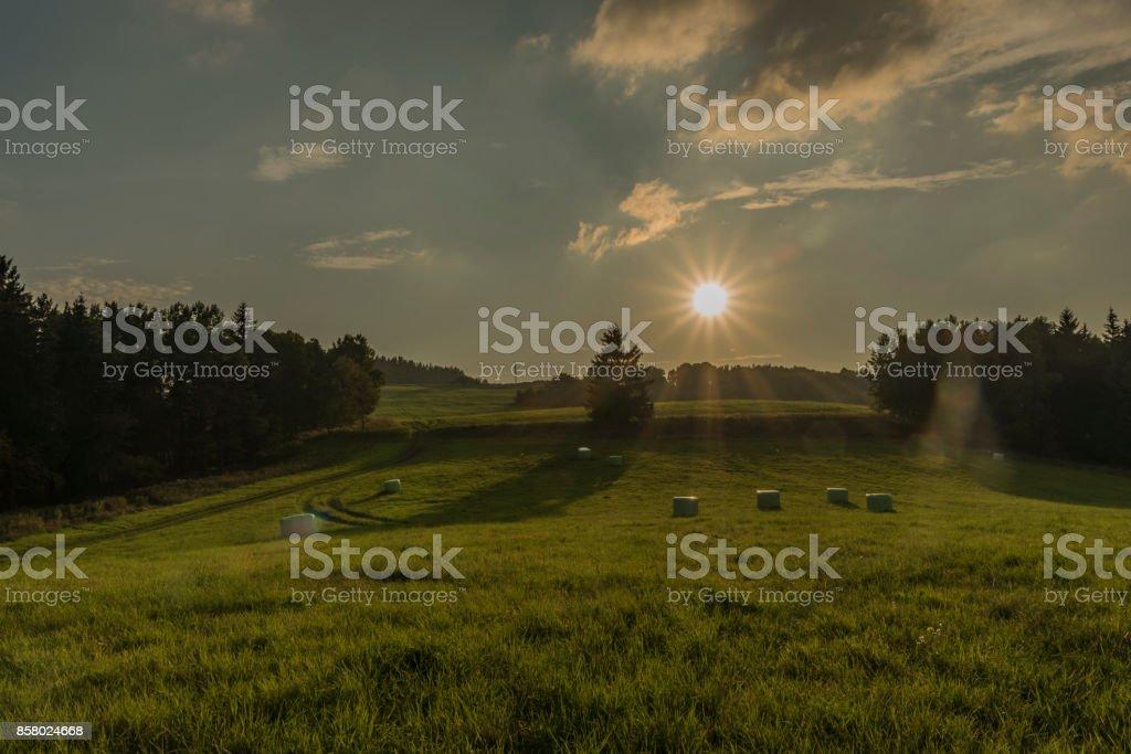 Sun and field in evening in Slavkovsky les national park stock photo