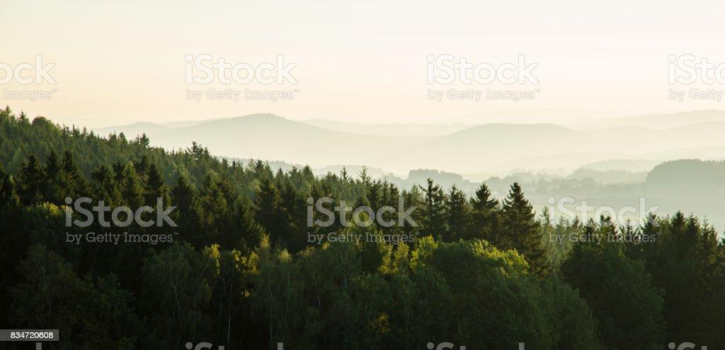 Sun and fog. stock photo