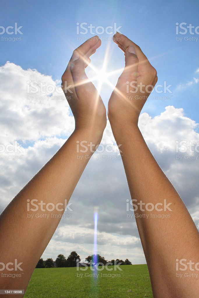 Sun and life royalty-free stock photo