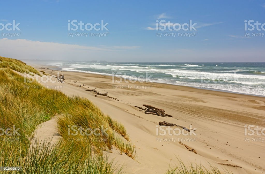 Sun and Wind on the Pacific Coast stock photo