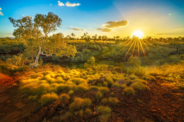 sun at sunset over joffre gorge in karijini national park, western australia 1 - western australia stock pictures, royalty-free photos & images