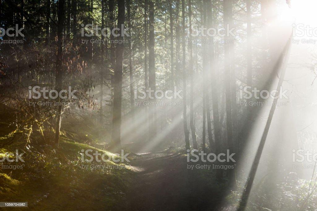 Sun Beam stock photo