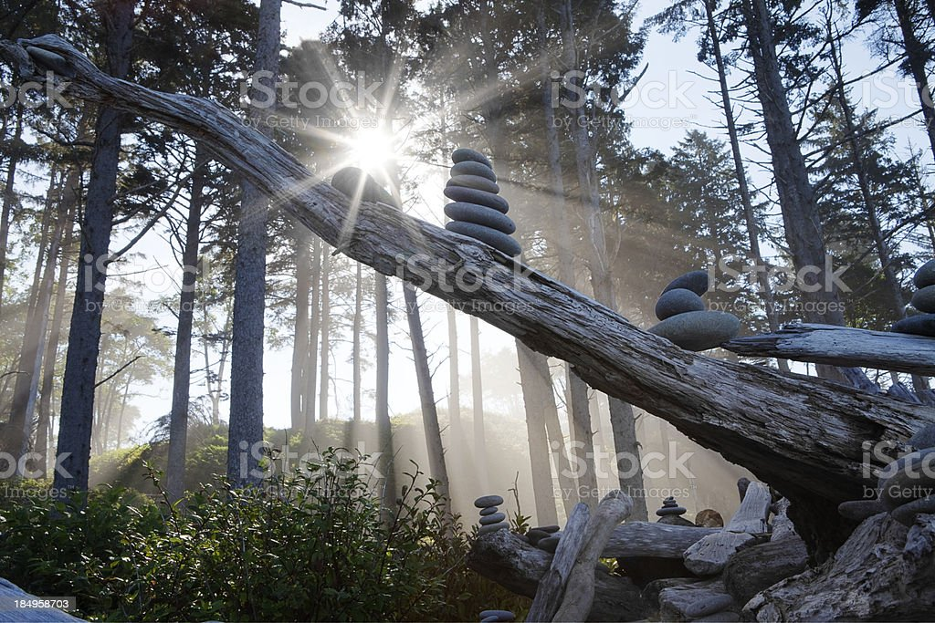 Sun burst stock photo