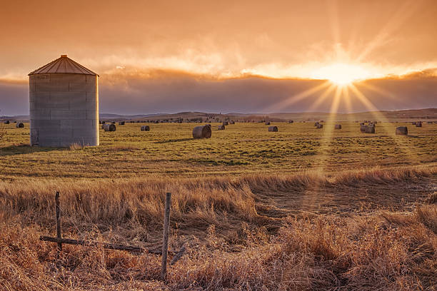 Sun Burst Prairie Sunset Landscape of the setting sun on the prairie with a grain elevator and sunburst. alberta stock pictures, royalty-free photos & images