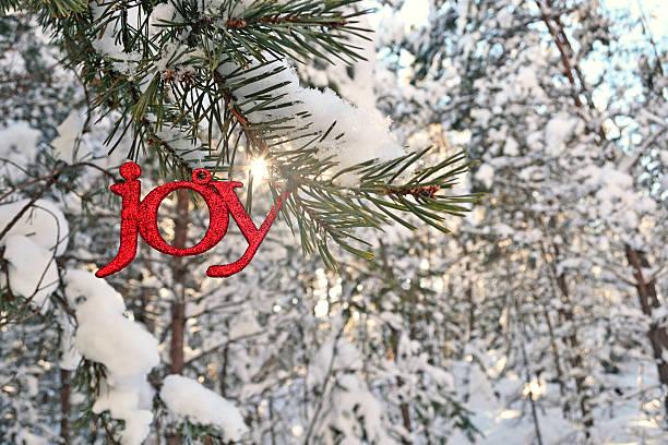 Sun Bursts above a Glitter Joy Ornament in Winter stock photo