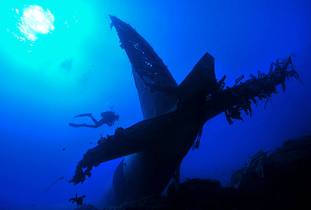 sun diver an plane wreck - artificial reef stock pictures, royalty-free photos & images