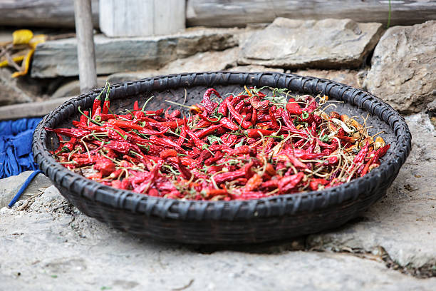Sun dried chili peppers stock photo