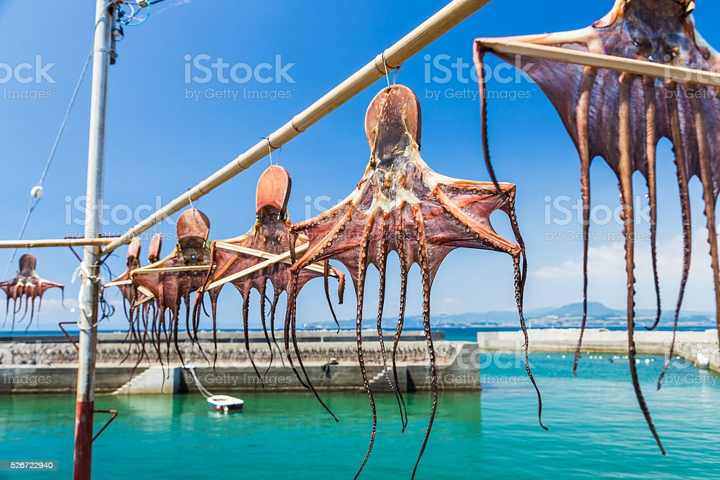 Sun dried octopus hanging on bamboo on Amakusa coast, Kumamoto stock photo