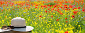 sun glasses and straw hat on wooden plank in foreground, colorful summer flower meadow with many wild flowers in background