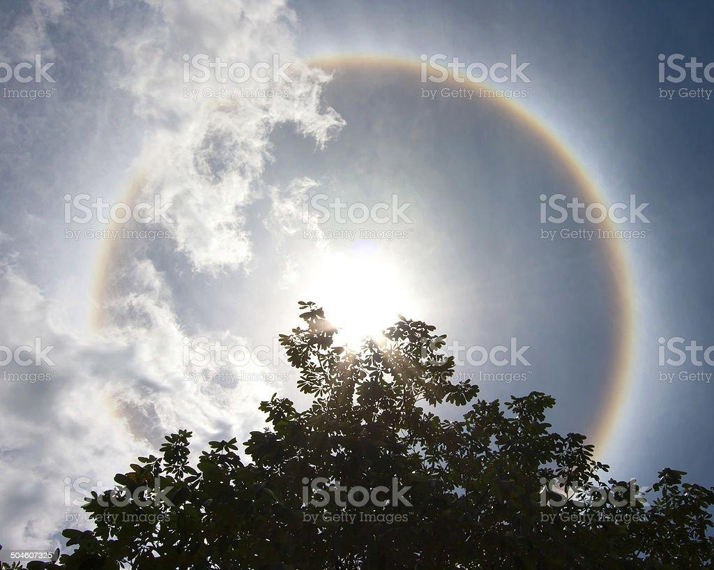 Sol halo - foto de acervo