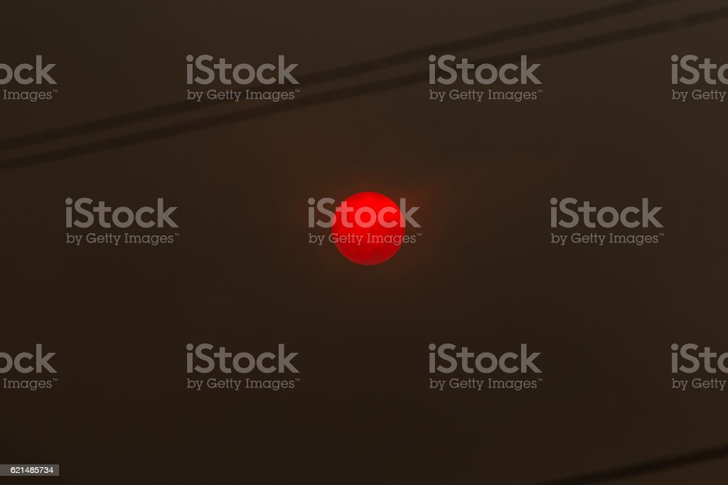 Sun in a forest fire with smoke foto stock royalty-free