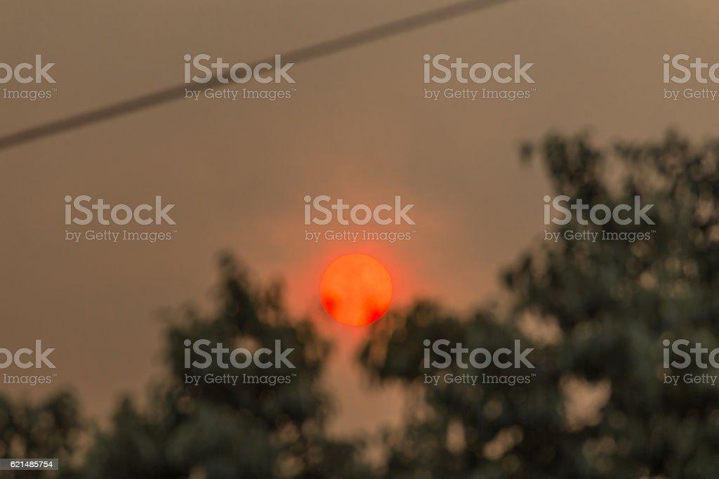 Sun in a forest fire with smoke Lizenzfreies stock-foto