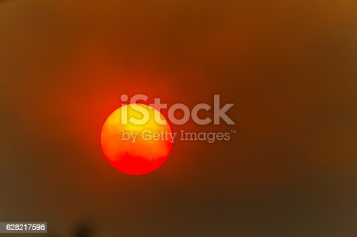 Sun in a forest fire with smoke