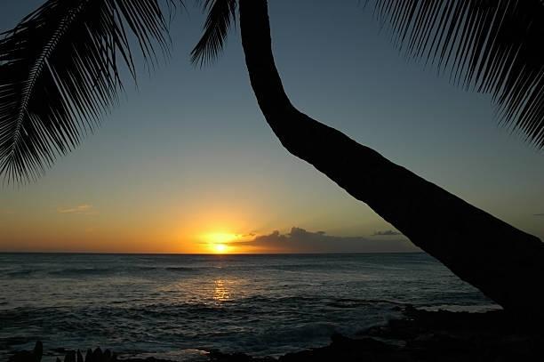 Sun in Oahu stock photo